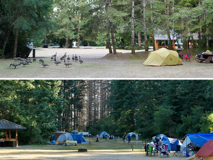 Popular cycle touring campgrounds | Porpoise Bay & Rathtrevor Provincial Parks | cycle touring Vancouver Island & Sunshine Coast