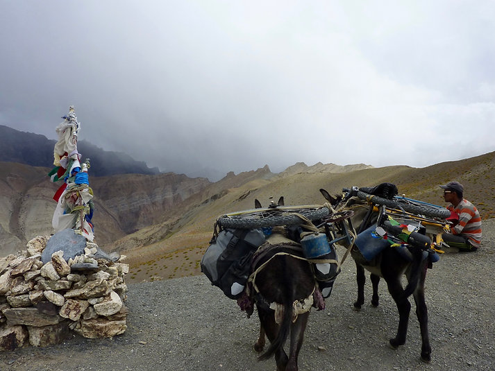 Thorn Nomad cycle touring bike | Thorn Nomad touring Ladakh | Thorn Nomad donkey trek