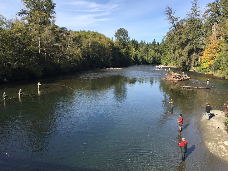 Salmon fishing along the Puntledge River, Courtenay, Vancouver Island, bike tours