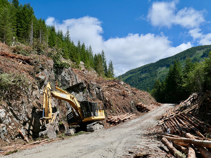 Logging equipment parked along a backroad during downtime. Off West Jordan Main, north of Port Renfrew. Bikepacking south Vancouver Island