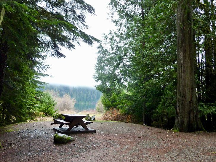 Ralph River Provincial Campground | Buttle Lake in Strathcona Park | cycle touring Vancouver Island