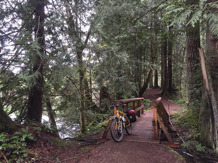 Puntledge River trails | Courtenay cycling trails | cycle touring Vancouver Island