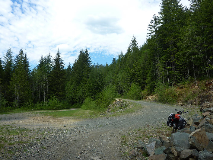 Route to Toma Main | NW of Elsie Lake | bikepacking Port Alberni to Courtenay