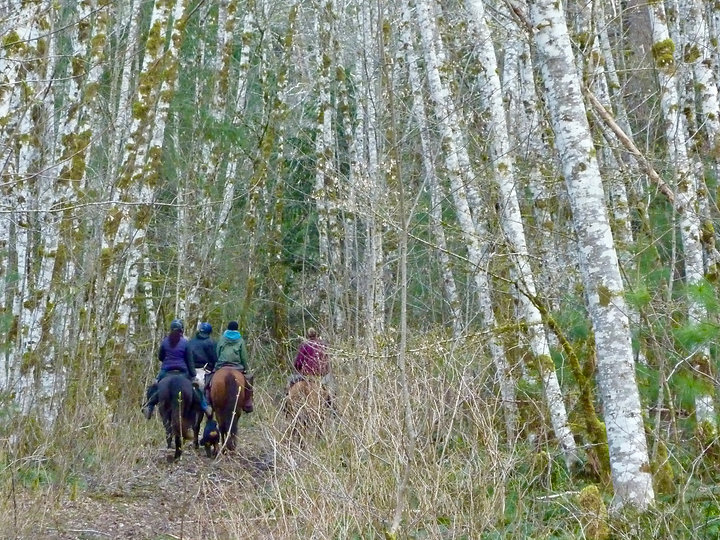 Horse Camps for equestrians | Salmon-Brewster Horse Trail | cycle touring Vancouver Island