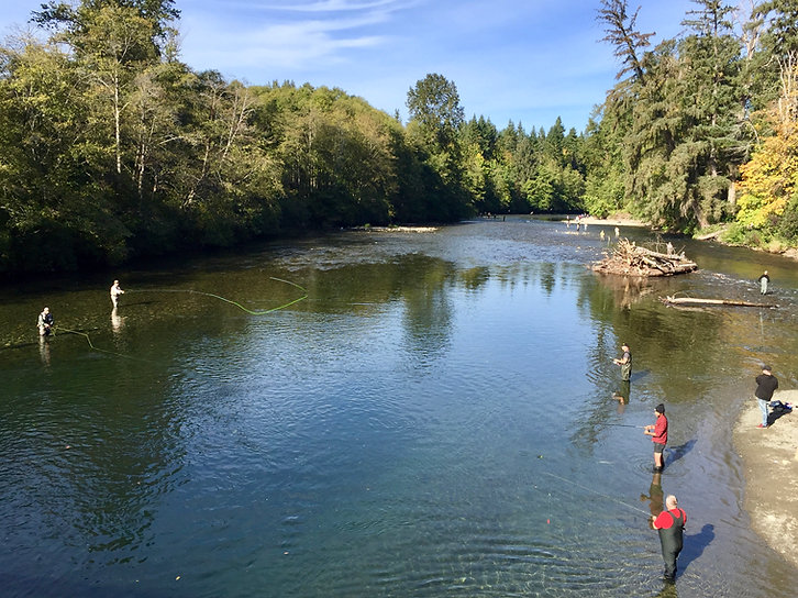 Salmon fishing | Puntledge River bridge, north Courtenay | cycle touring Vancouver Island