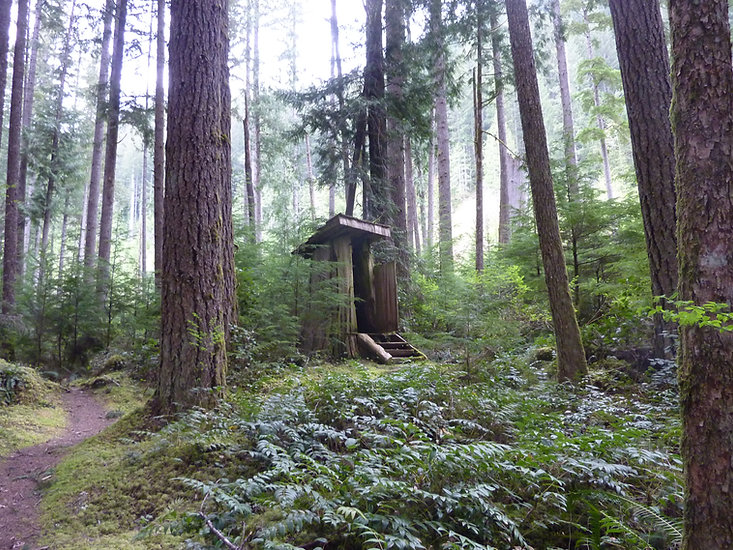 Windsor Lake Rec Camp | outhouse carved from stump | bikepacking north Sunshine Coast