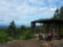 Hunting blind on West Carlson Main | above Homesite Creek Rec Camp | bikepacking Sunshine Coast