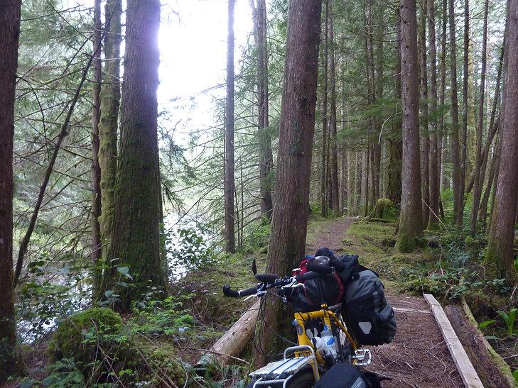 Portage trail to Nanton Ireland North Rec Camp | Powell Forest Canoe Circuit | bikepacking north Sunshine Coast
