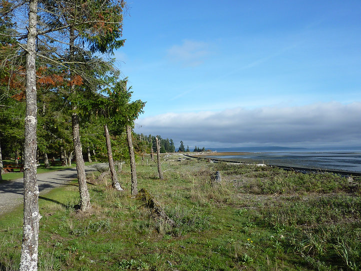 Rathtrevor Provincial Campground | cycle touring Vancouver Island