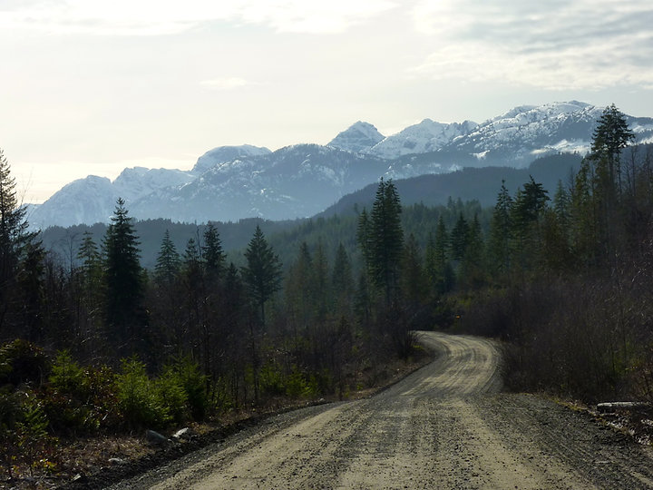 road to Upper Quinsam Lake | Willington Point Rec Camp | cycle touring Vancouver Island