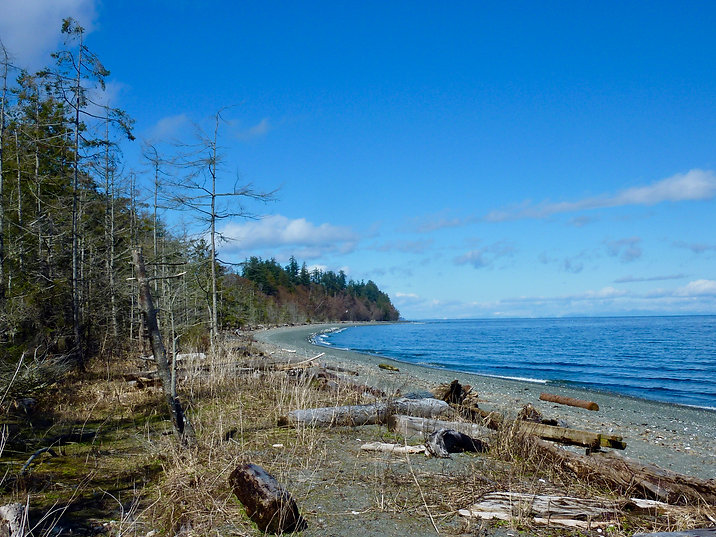 Fillongley Provincial Campground | Denman Island south of Courtenay | cycle touring Gulf Islands