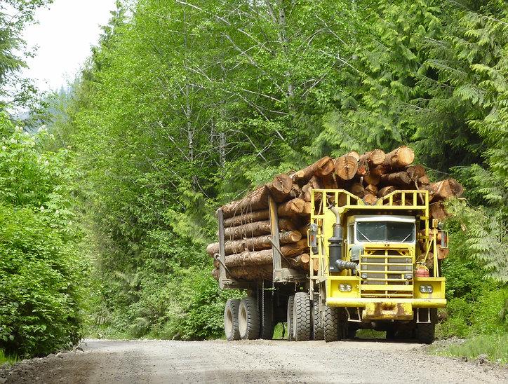 Logging truck near Grant Bay, bikepacking NW Vancouver Island