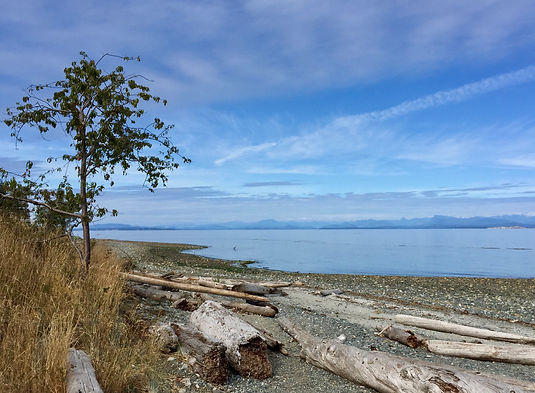 Miracle Beach Provincial Park | cycle touring Vancouver Island | cycling links