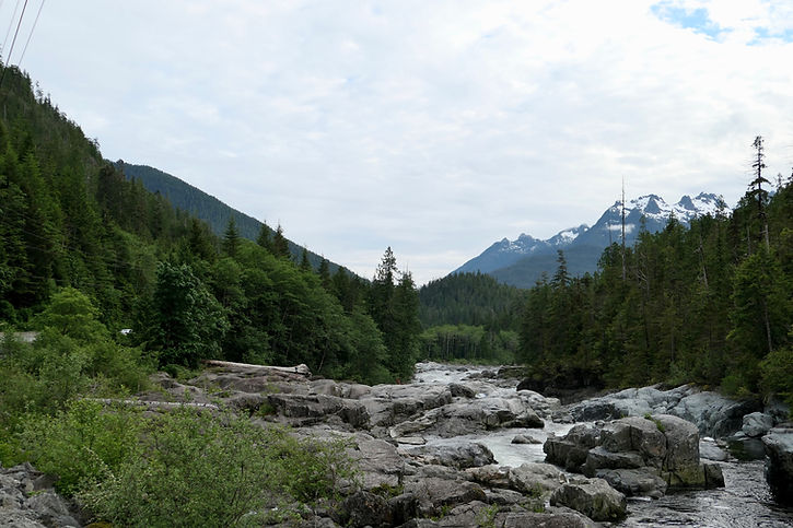 Cycling Pacific Rim Highway along Kennedy River | cycling to Tofino and West Coast | cycle touring Vancouver Island