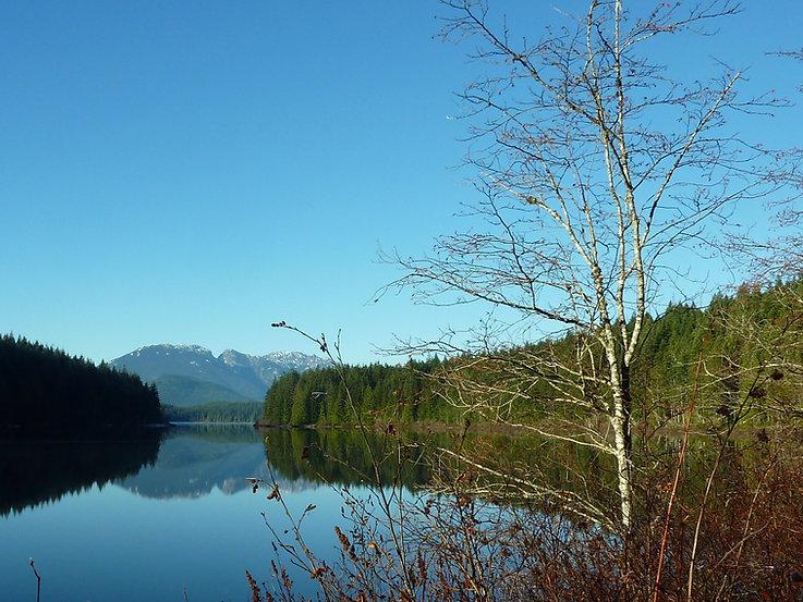 Stella Bay Rec Camp | NE of Roberts Lake | cycle touring Vancouver Island
