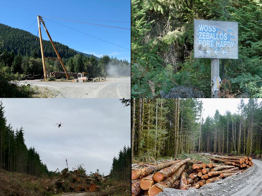 North Vancouver Island logging | old Nimpkish Highway to Woss | bikepacking north Vancouver Island