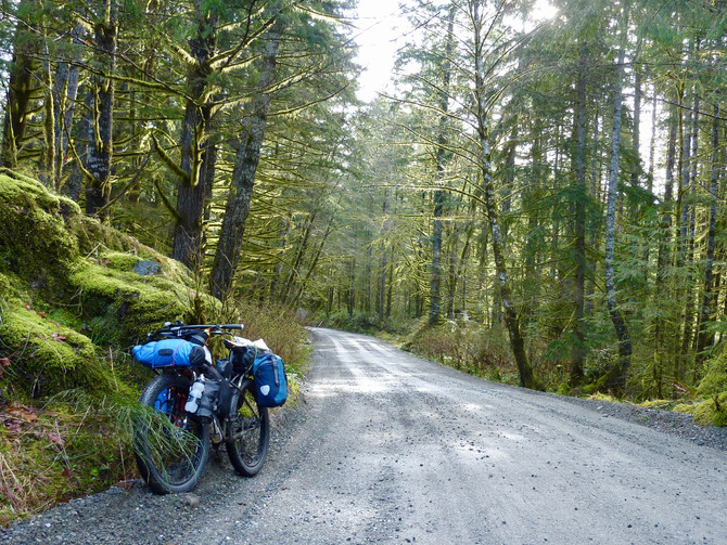 North to Sayward on the (snow free!) Backroads