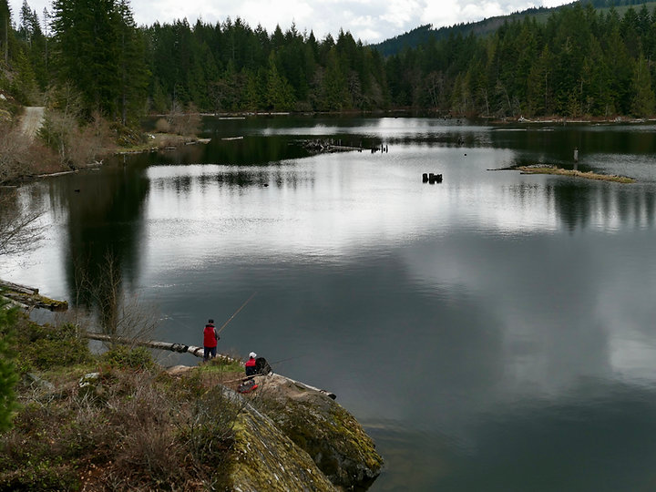 Fly fishing the Puntledge River | north Courtenay | cycle touring Vancouver Island