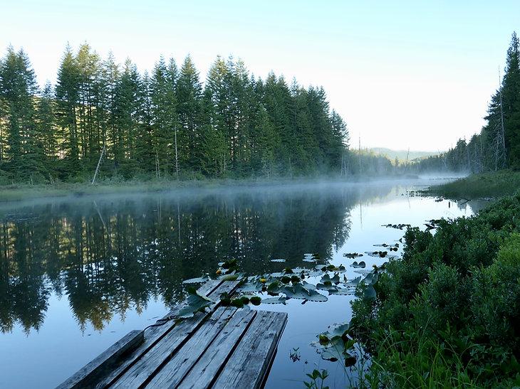 Long Lake Rec Camp | backroads south of Cowichan Lake | bikepacking south Vancouver Island