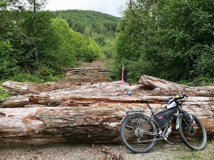 Bikepacking & decommissioned bridge | bikepacking backroads from Courtenay