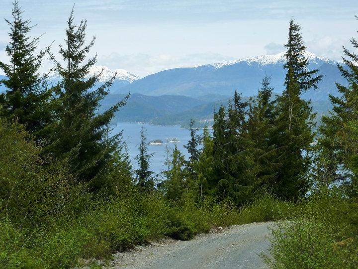 Naka Creek Rec Camp | backroad from Eve River log sort | bikepacking north Vancouver Island