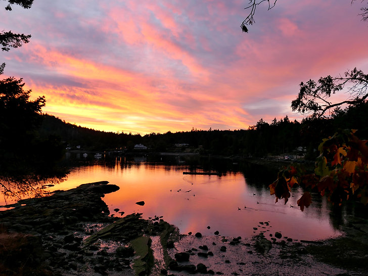 Views from Mayne Island Campground | Seal Bay, Miners Bay | cycle touring south Gulf Islands