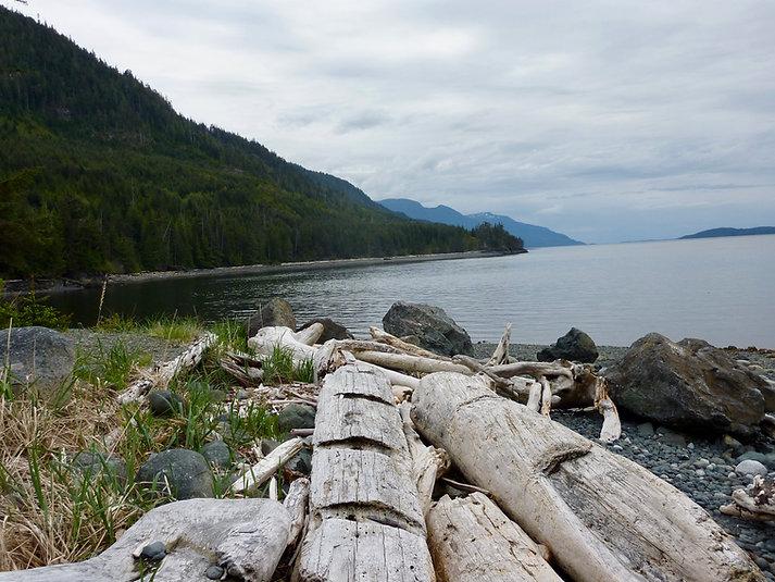 Naka Creek Rec Camp | beach along Johnstone Strait | bikepacking north Vancouver Island