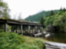 O'Connell Lake Rec Camp   near Mahatta River & Side Bay   bikepacking north Vancouver Island