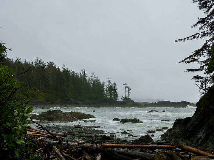 Cape Palmerston Rec Campground | bikepacking NW Vancouver Island | backroad cycle touring
