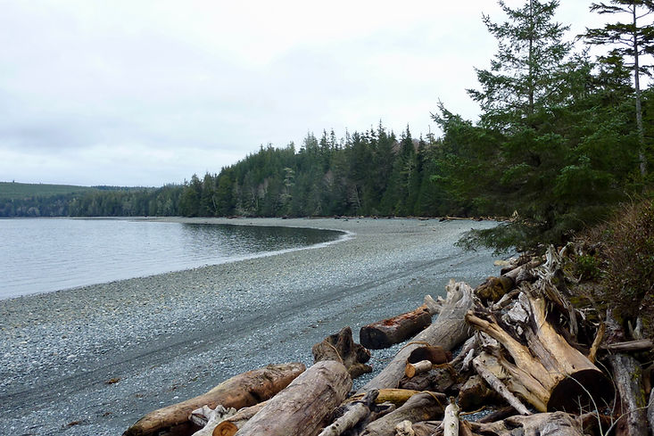 Bere Point Regional Campground | north Malcolm Island | cycle touring north Vancouver Island