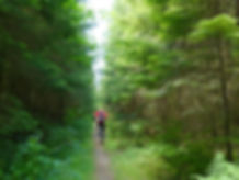 Cowichan Valley Trail | unicyclist | cycle touring Vancouver Island
