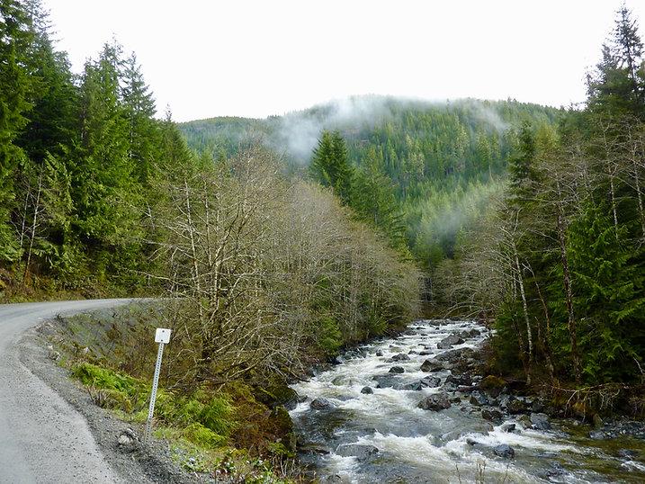 Road to Tahsis along Tupana River | bikepacking Gold River to Tahsis | cycle touring Vancouver Island