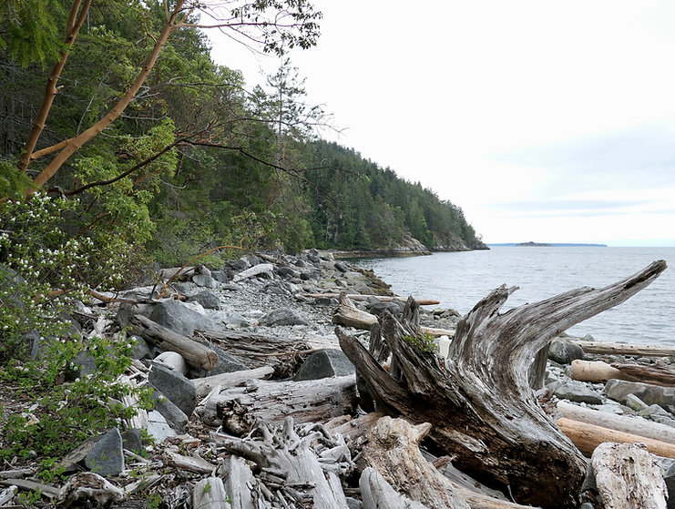 Bikepacking to Sarah Point | Sunshine Coast Trail | Malaspina Peninsula