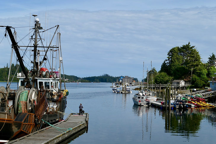 Ucluelet harbour | cycling Port Alberni to Ucluelet | cycle touring Vancouve Island
