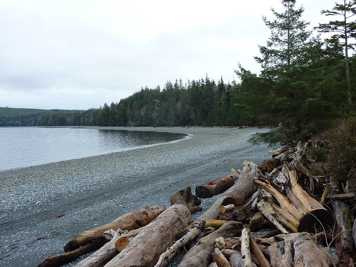 Beach at Bere Point Regional Campground | Malcolm Island | cycle touring NE Vancouver Island
