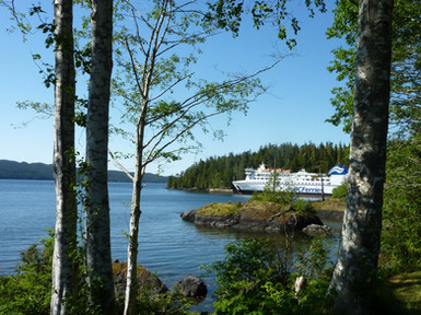 Northern Experience at Bear Cove