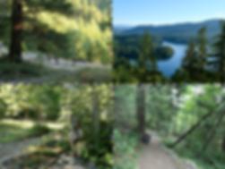 Klein Lake Cut, Suncoaster Trail | bikepacking Sunshine Coast