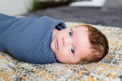NH Lifestyle Newborn Photographer