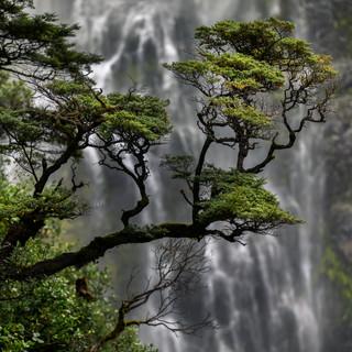Devils Punchbowl Waterfall