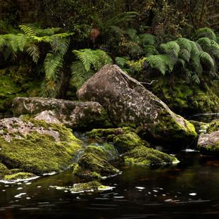 Rocks in the Creek