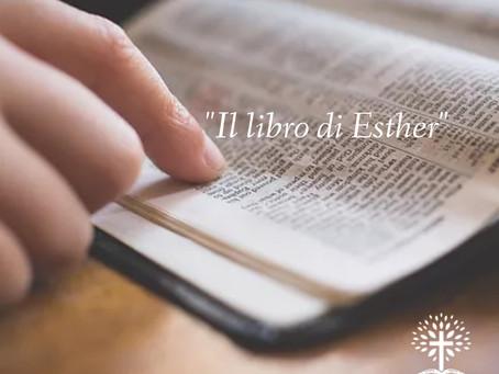 """""""Il libro di Esther, parte V"""""""