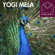 00520 Yogi Mela 1-01ig (2).jpg