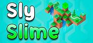 Sly-slyme-logo