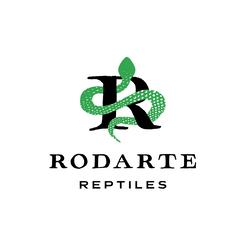 Logo-Rodarte@2x.png