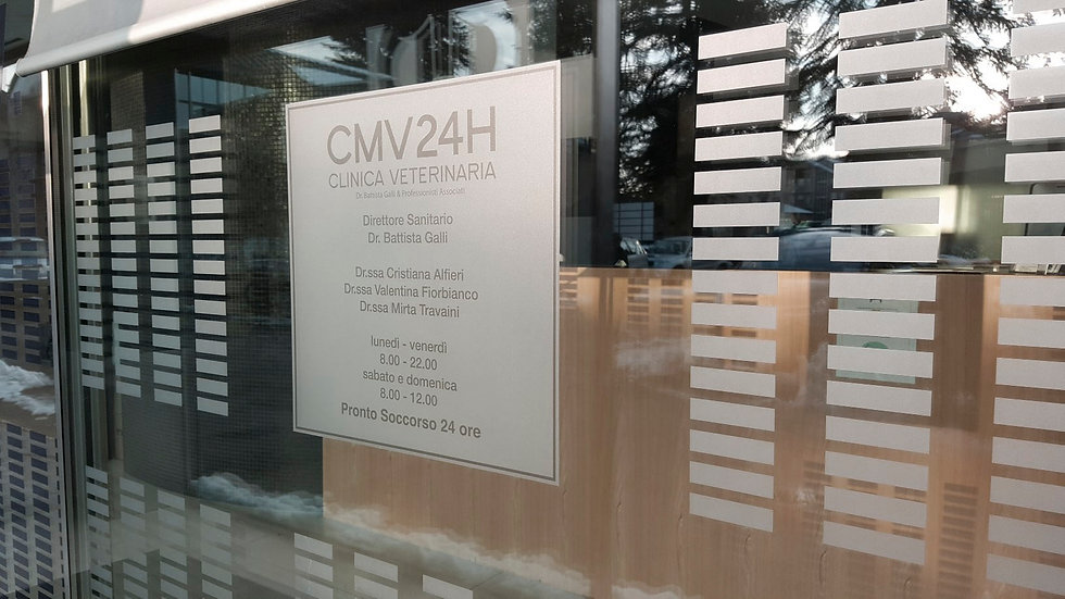 CMV_vetrofania.jpg