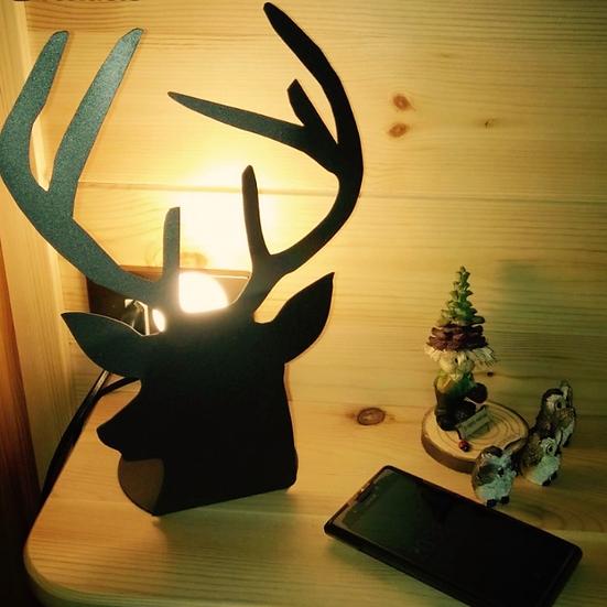 02. Lampada Cervo
