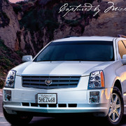 Cadillac SRX Campaign