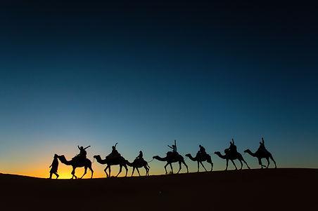 Sillhouette of camel caravan with happy