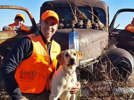 """Is the term """"Canadian Labs"""" new in the Labrador Retriever world?  If so it is long overdue!"""
