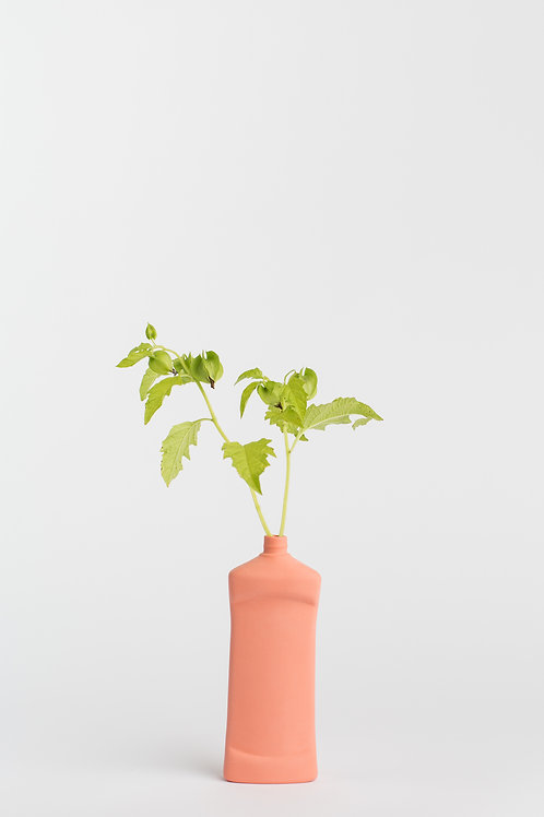 Foekje Fleur bottle vase #14 salmon